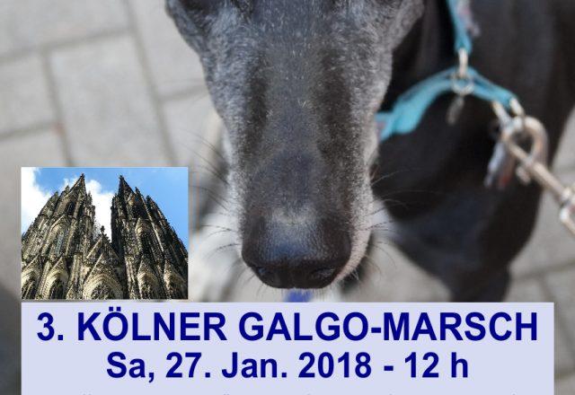 3. Kölner Galgo-Marsch